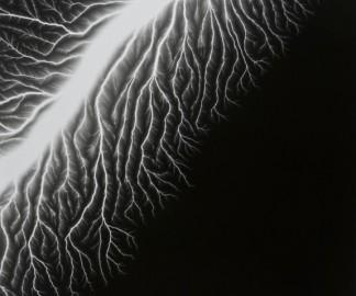 sugimoto-electricite-1.jpg