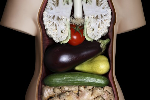 corps-legume-pub.jpg