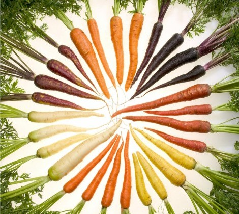 Arc-en-ciel-carottes.jpg