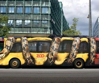 bus-serpent-boa
