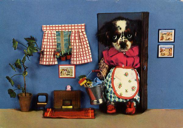 carte postale wtf chat chien 06 Chiens et chats dans des cartes postales insolites