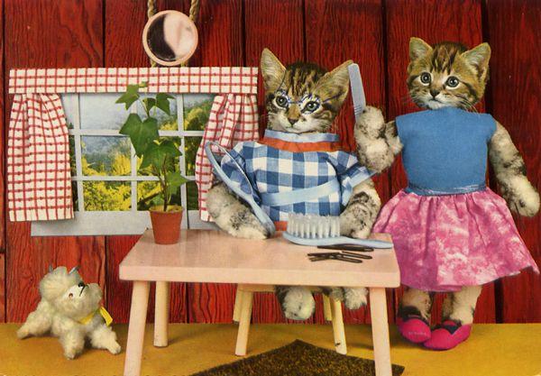 carte postale wtf chat chien 09 Chiens et chats dans des cartes postales insolites