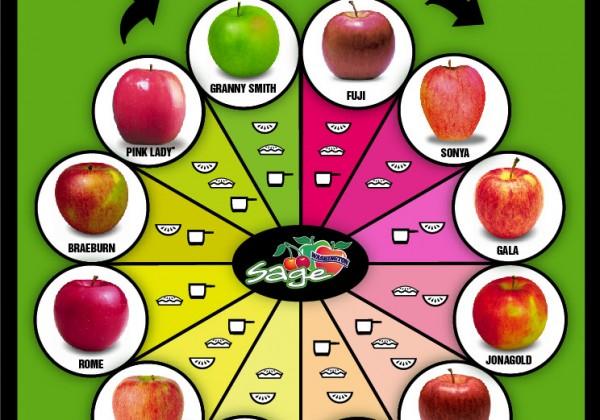 differentes-variete-pomme-gout