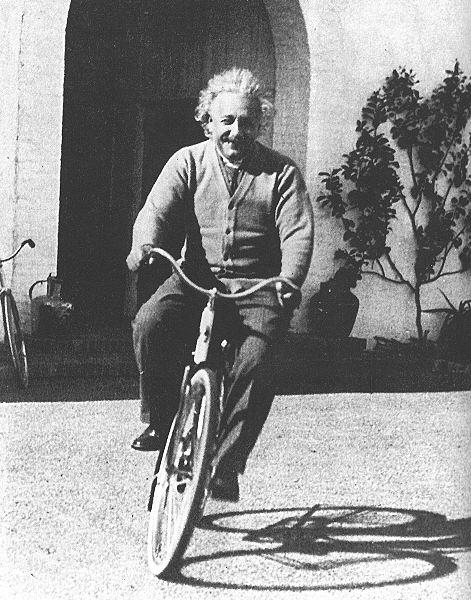 einstein velo 17 portraits dAlbert Einstein