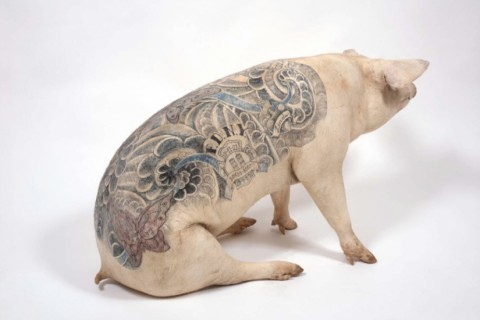 tatouage-cochon-01.jpg