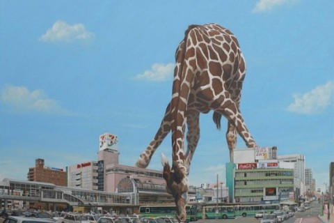 animaux-japon-tokyo-dessin-graphisme-01.jpg