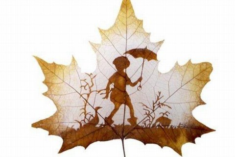 dessins-feuilles-morte-automne-01.jpg