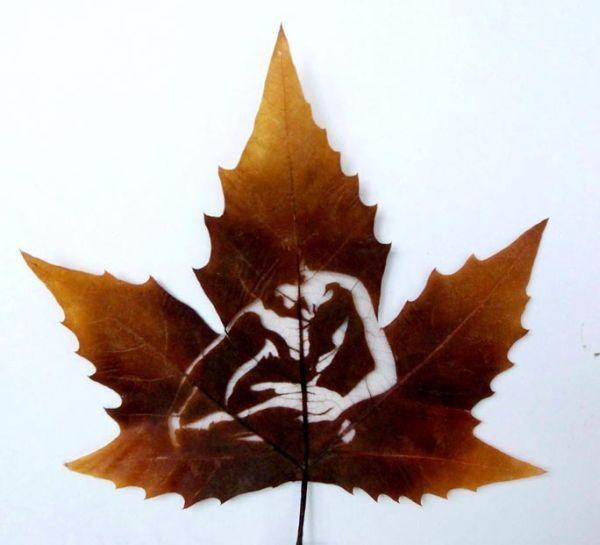 Des dessins sur des feuilles mortes - Dessin feuille morte ...