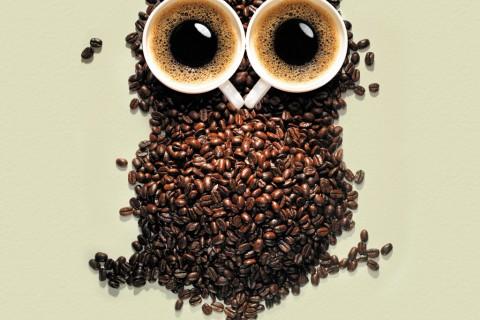 hiboo-cafe.jpg