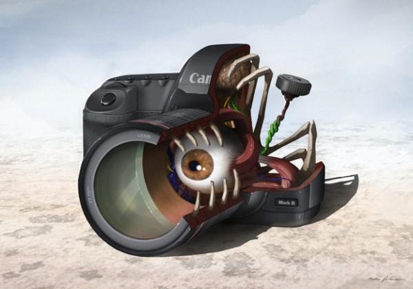 interieur-anatomie-5d-mkii-canon.jpg