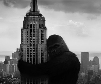kingkong-New-york.jpg