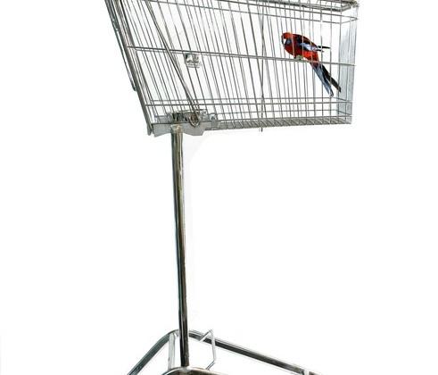 cage-oiseau-caddy.jpg