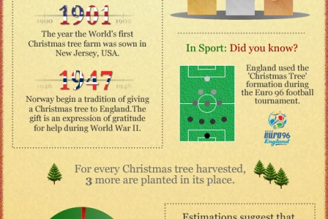 statistiques-sapins-arbres-noel-infographie.jpg