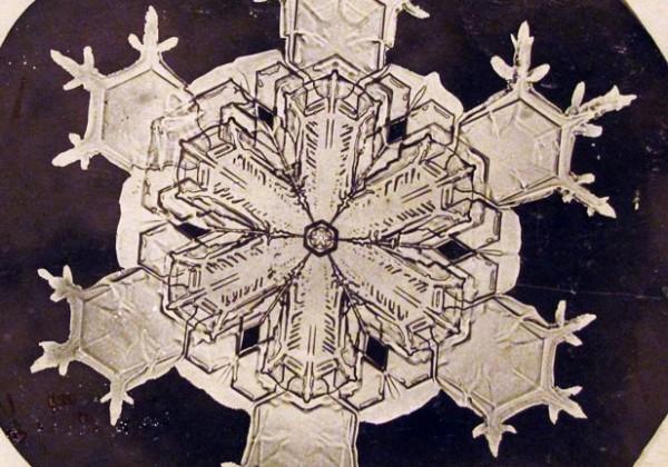 Wilson-Alwyn-Bentley-premiere-photo-flocon-neige-01.jpg