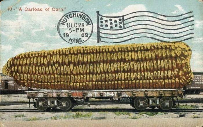 carte postale aliment usa geant13 Cartes postales daliments géants