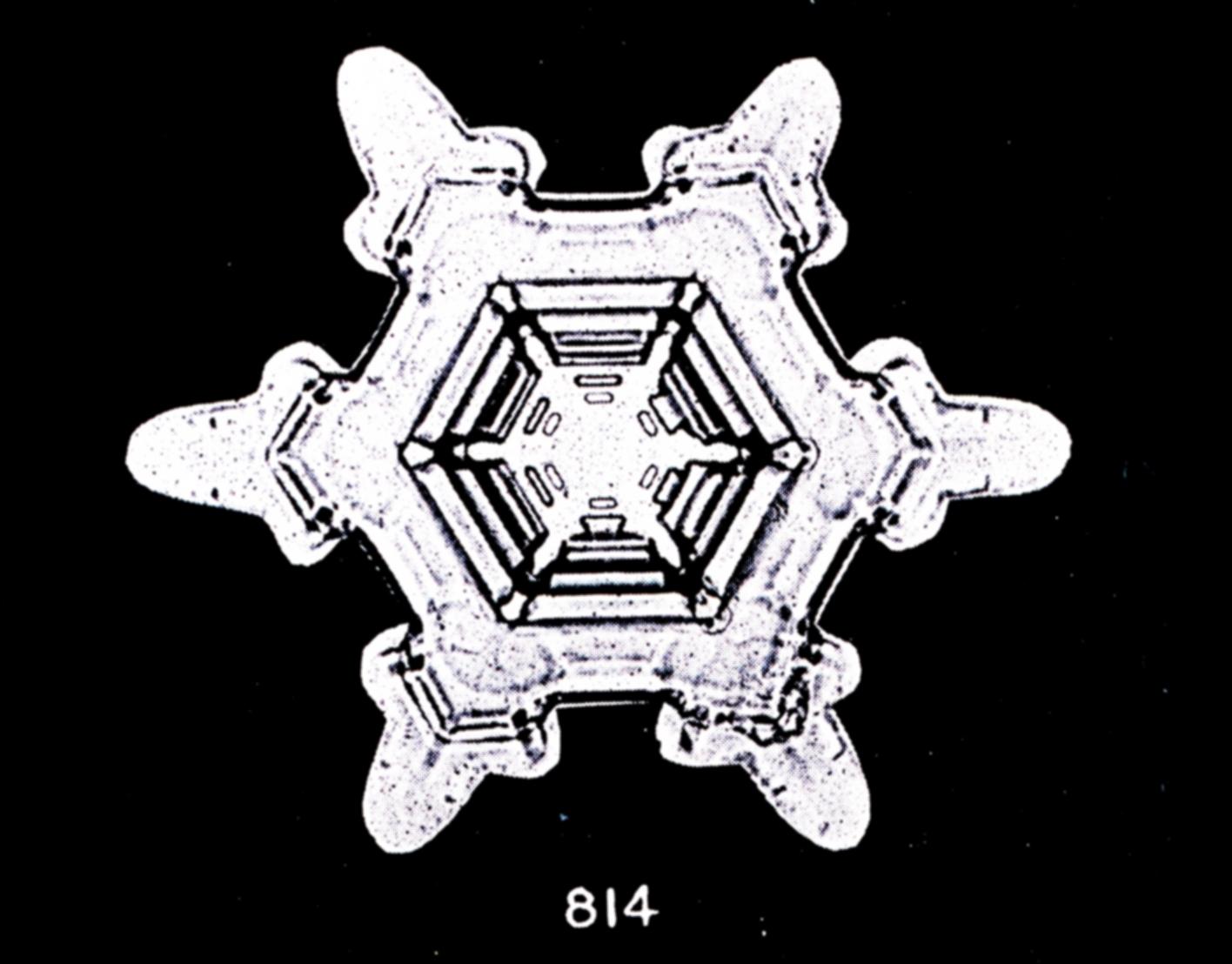 premier-flocon-neigei-04