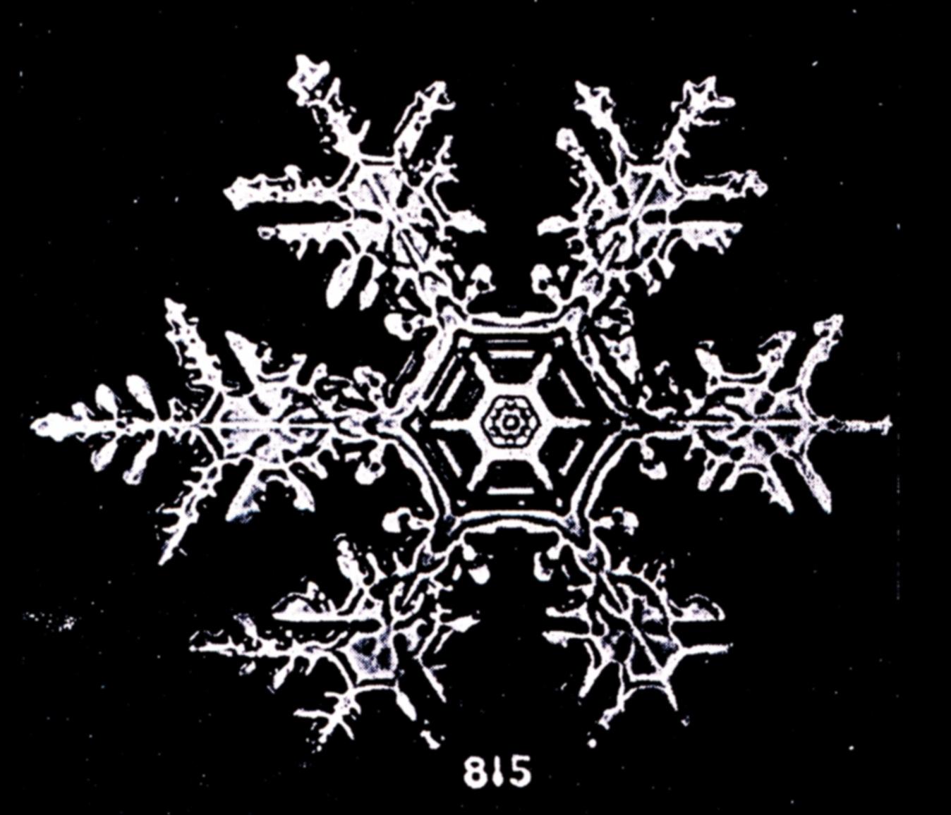 premier-flocon-neigei-05