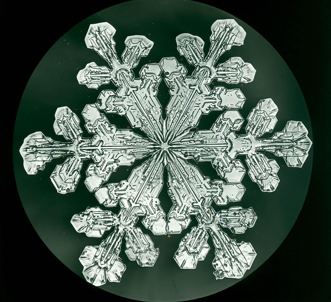 premier-flocon-neigei-07