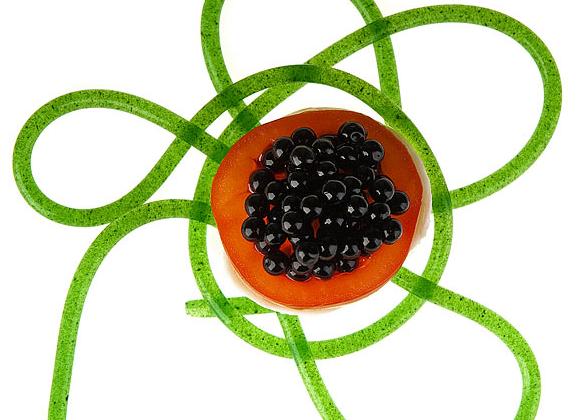 apprentissage-cuisine-moleculaire-01.png