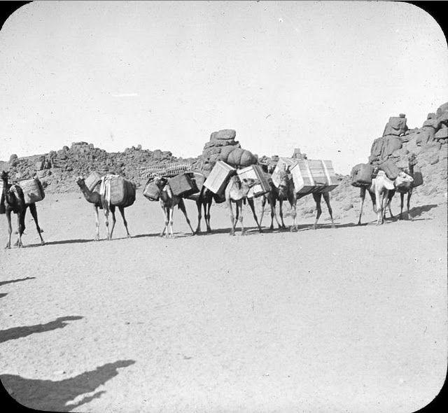 egypte vintage ancien vieille photo pyramide 66 LÉgypte avant les touristes