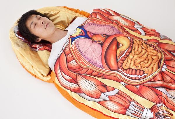 sac-couchage-anatomique-01.jpg