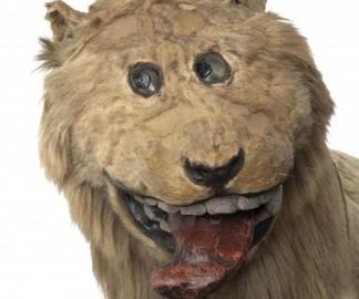 Gripsholm-lion-paille-mouarf.jpg