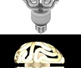 ampoule-basse-consomation-cerveau.jpg