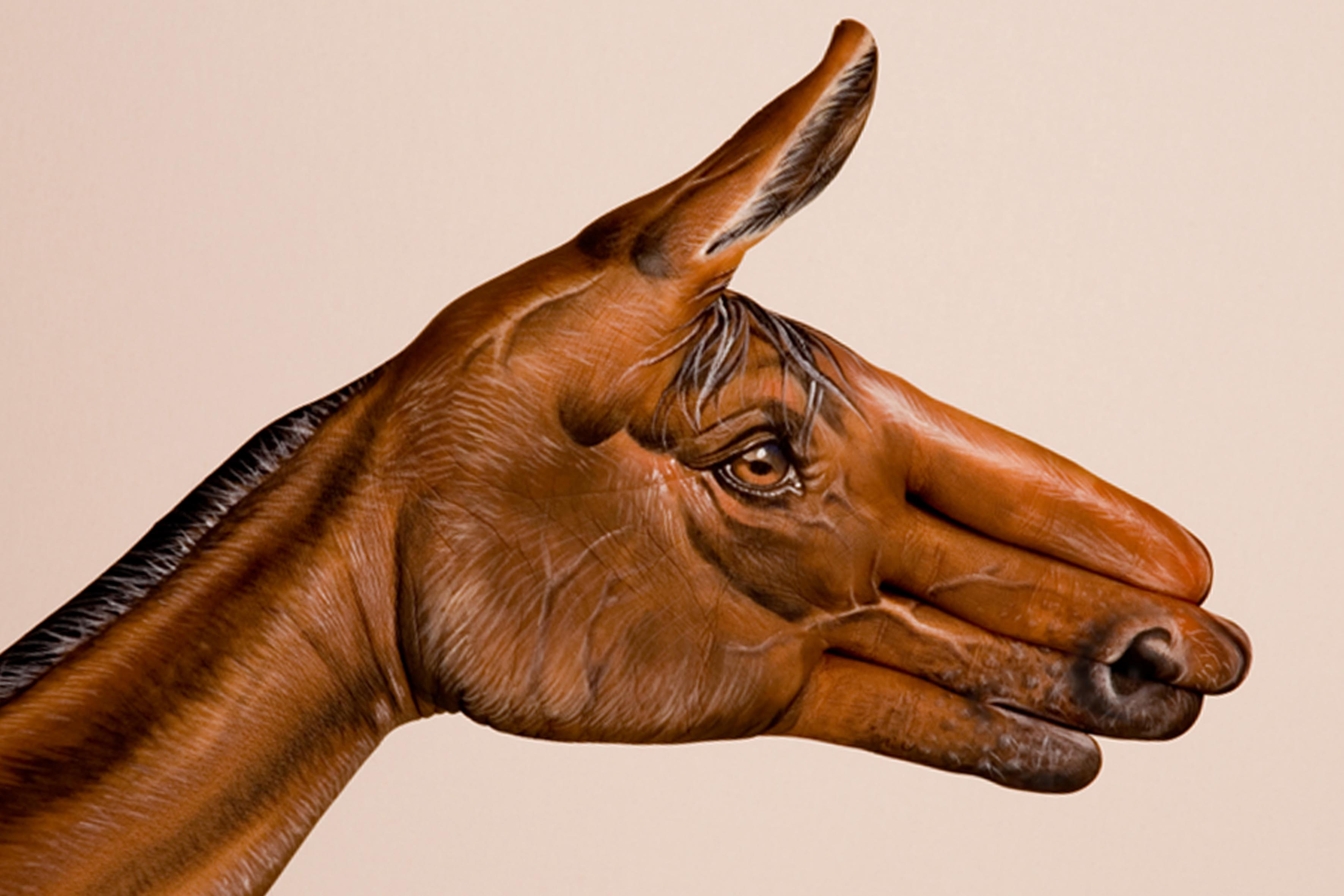 Leonard Auto Body >> Peintures d'animaux sur des mains