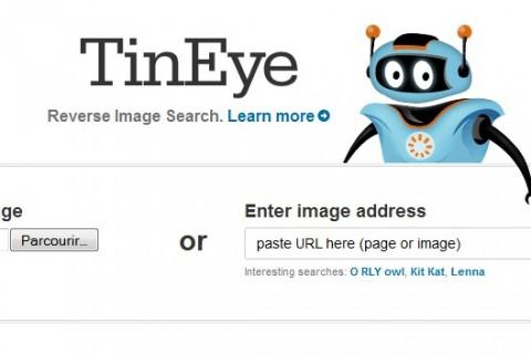 tineye.jpg