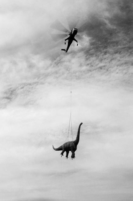 2 helicoptere dinosaure Nous navons pas de dinosaure
