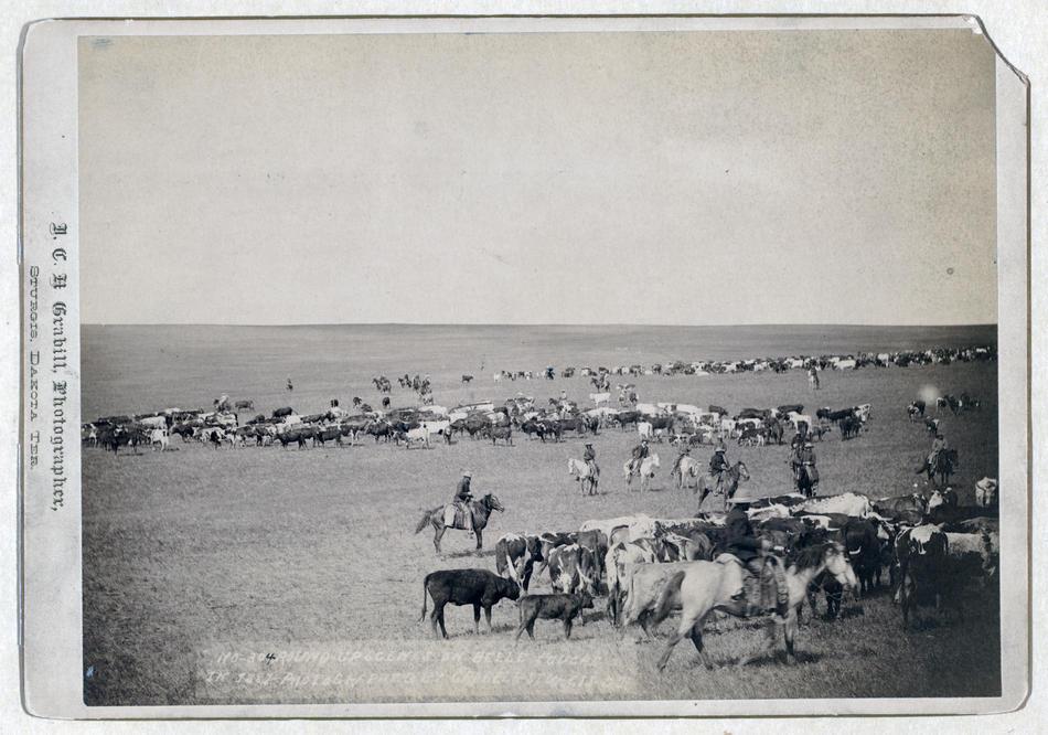 conquete ouest americain histoire wild far ouest 06 A la conquête de lOuest Américain