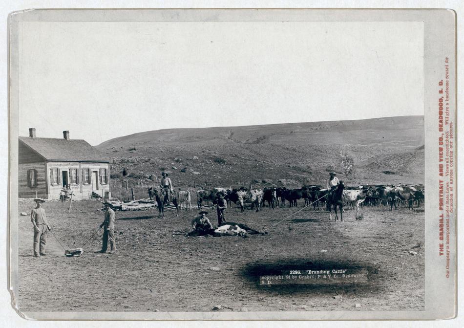 conquete ouest americain histoire wild far ouest 07 A la conquête de lOuest Américain