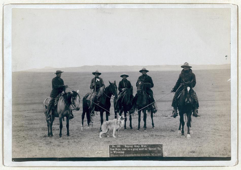 conquete ouest americain histoire wild far ouest 09 A la conquête de lOuest Américain