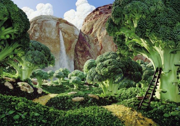 paysage-nourriture-aliment-01.jpg