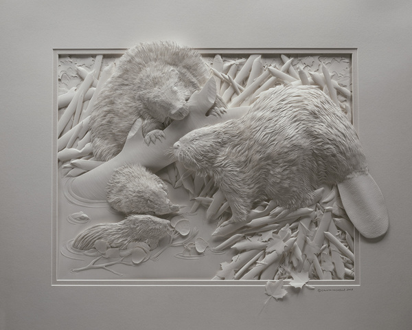 Häufig Les sculptures sur papier de Calvin Nicholls IX98