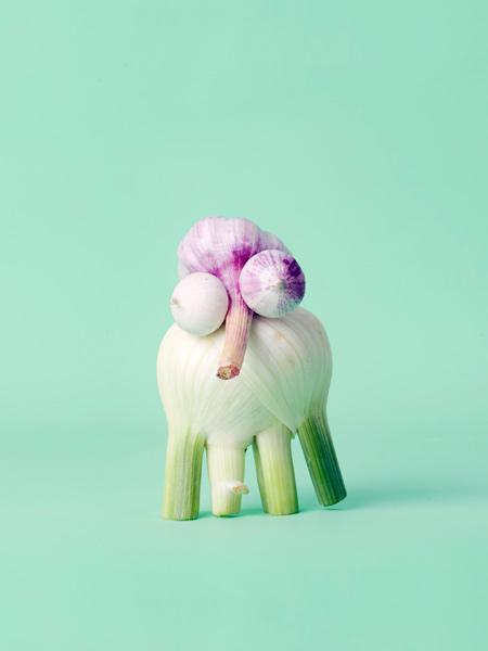 animaux legumes cark kleiner 09 Les animaux en fruits et légumes de Carl Kleiner