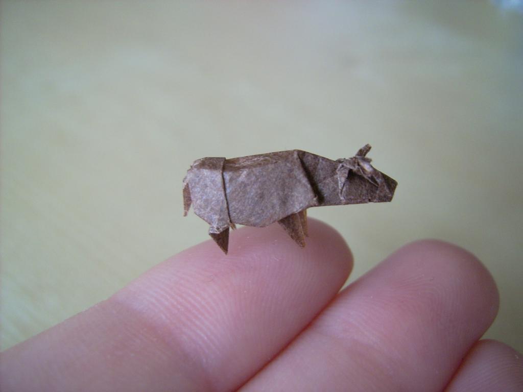 mini origami 10 Des origamis miniatures