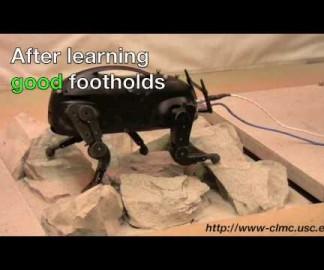 Boston Dynamics montre son robot LittleDog