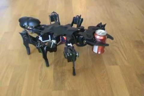 Robot Fourmi