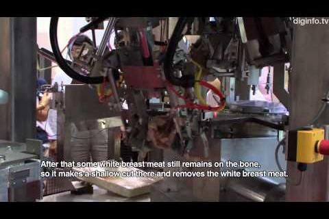 Robot à désosser les poulets
