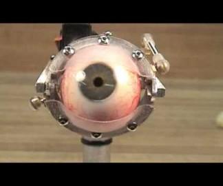 L'oeil mécanique