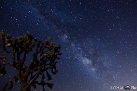 La pluie de météores des Perséides en Timelapse