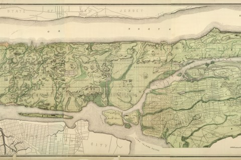 carte-topographique-new-york