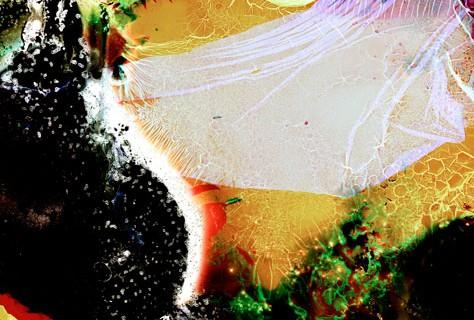 bacterie-film-negatif-01