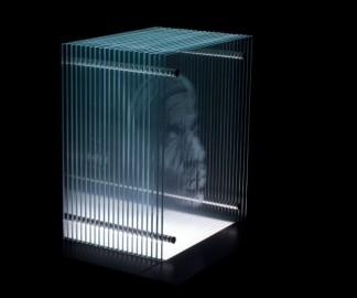 portrait-3d-verre-01