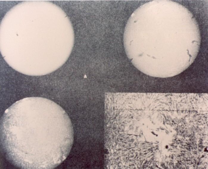 images golden record voyager 07 Le Voyager Golden Record : Comment se présenter aux extraterrestres ?