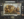 zoo steampunk 02 Zoo Steampunk  design bonus art