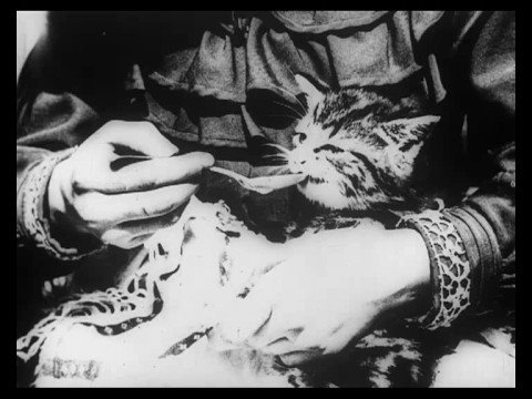 Le chat malade – 1903