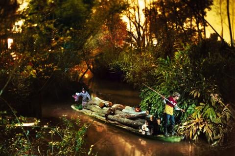 Burning Willows