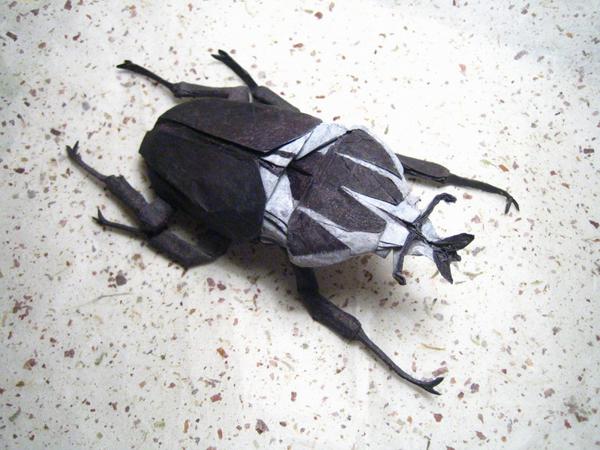 insecte origami feuille papier 07 Insectes réalistes en une feuille de papier geek divers bonus art